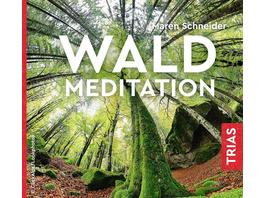 Waldmeditation