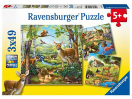 Wald-/Zoo-/Haustiere, Puzzle (Ravensburger - 09265)