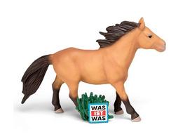 Content-Tonie: Was ist was Pferd